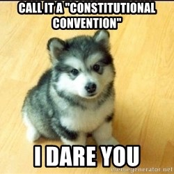 """Baby Courage Wolf - CALL IT A """"CONSTITUTIONAL CONVENTION"""" I DARE YOU"""