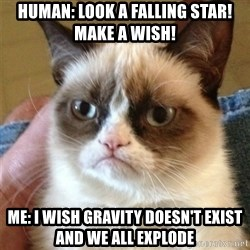 Grumpy Cat  - human: look a falling star! make a wish! me: I wish gravity doesn't exist and we all explode