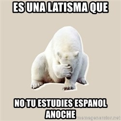 Bad RPer Polar Bear - Es una latisma que no tu estudies espanol anoche