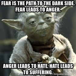 Yodanigger - Fear is the path to the dark side. Fear leads to anger.  Anger leads to hate. Hate leads to suffering.