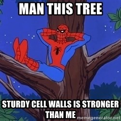 Spiderman Tree - man this tree sturdy cell walls is stronger than me