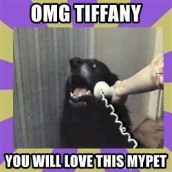Yes, this is dog! - OMg tiffany you will love this mypet