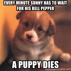cute puppy - Every minute sunny has to wait for his bell pepper A puppy dies