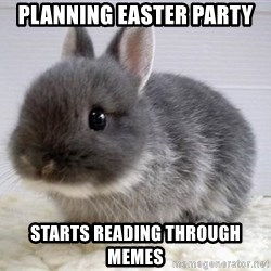 ADHD Bunny - Planning easter party starts reading through memes