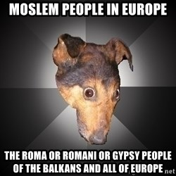 Depression Dog - Moslem People in Europe The Roma or Romani or Gypsy People of the Balkans and all of Europe