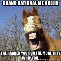 Horse - grand national me bollix the harder you run the more they whip you,