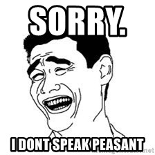 Dumb Bitch Meme - Sorry.        I dont speak peasant