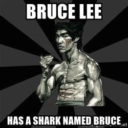 Bruce Lee Figther - bruce lee has a shark named bruce