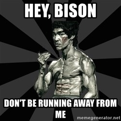 Bruce Lee Figther - hey, bison DON'T BE RUNNING AWAY FROM ME