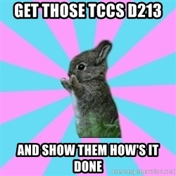 yAy FoR LifE BunNy - Get those TCCs D213  and show them how's it done