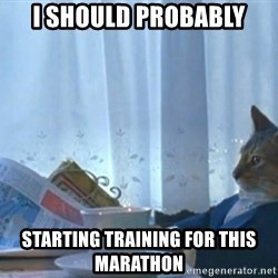 Sophisticated Cat - i should probably starting training for this marathon