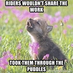 Baby Insanity Wolf - Riders wouldn't share the work Took them through the Puddles