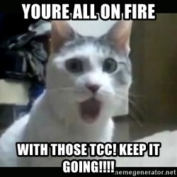 Surprised Cat - Youre all on fire With those tcc! Keep it going!!!!