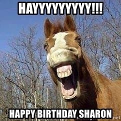 Horse - Hayyyyyyyyy!!! Happy birthday Sharon