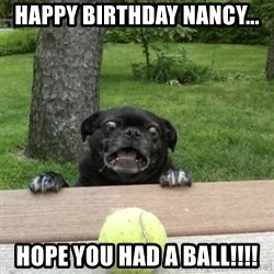 Ermahgerd Pug - Happy Birthday Nancy... Hope you had a ball!!!!