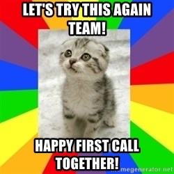 Cute Kitten - Let's try this again team! Happy first call together!