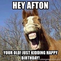 Horse - Hey Afton Your old! Just kidding happy birthday!