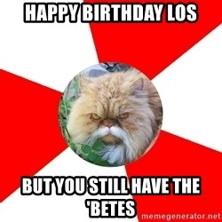 Diabetic Cat - Happy birthday loS But you still have the 'Betes