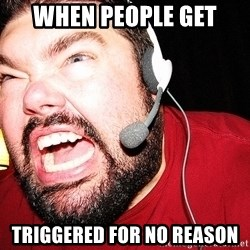 Angry Gamer - When people get  Triggered for no reason
