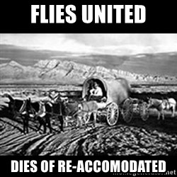 Oregon Trail Vindictus - flies united dies of re-accomodated