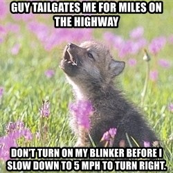 Baby Insanity Wolf - Guy tailgates me for miles on the highway Don't turn on my blinker before I slow Down to 5 MPH to turn right.