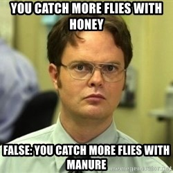Dwight Meme - You catch more flies with honey False: You catch more flies with manure