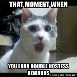 Surprised Cat - That moment when You earn double hostess rewards