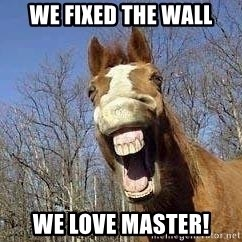 Horse - We fixed the wall We love master!
