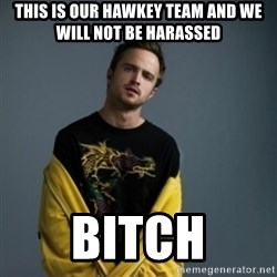 Jesse Pinkman - This is our HAwkey Team and we will not be HARASSED  Bitch