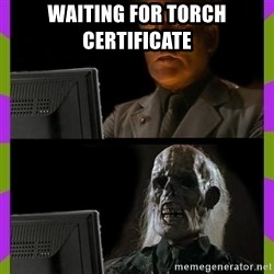 ill just wait here - Waiting for torch certificate