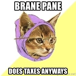 Hipster Kitty - brane pane does taxes anyways