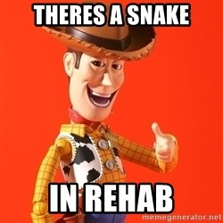 Perv Woody - theres a snake in rehab