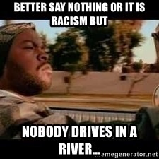 It was a good day - better say nothing or it is racism but nobody drives in a river...