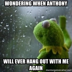 Sad Rain Kermit - Wondering when Anthony will ever hang out with me again