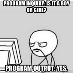 computer guy - Program Inquiry: Is it a boy or girl? Program Output: Yes.