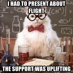 Science Cat - I had to present about flight the support was uplifting