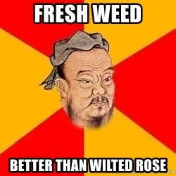 Wise Confucius - fresh weed better than wilted rose