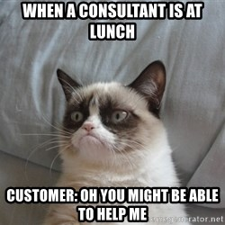 Grumpy cat 5 - When a consultant is at lunch Customer: oh you might be able to help me
