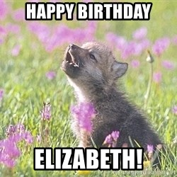 Baby Insanity Wolf - Happy birthday elizabeth!