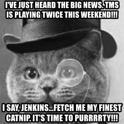 Monocle Cat - I've just heard the big news. TMS is playing twice this weekend!!! i say, jenkins...fetch me my finest catnip. it's time to purrrrty!!!