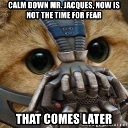 bane cat - Calm down MR. Jacques, now is not the time for fear That comes later