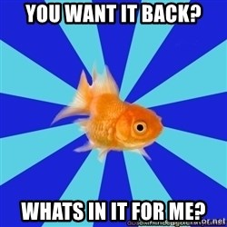 Absentminded Goldfish - YOU WANT IT BACK? WHATS IN IT FOR ME?