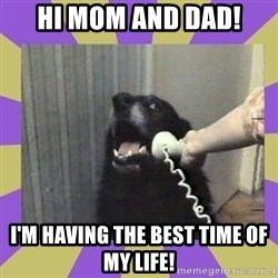 Yes, this is dog! - hi mom and dad! I'm having the best time of my life!