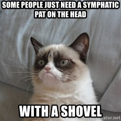 Grumpy cat 5 - SOME People JUST NEED A SYMPHATIC PAT ON THE head WITH A shovel