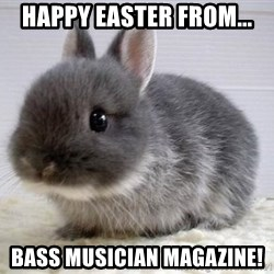 ADHD Bunny - Happy Easter from... Bass Musician Magazine!