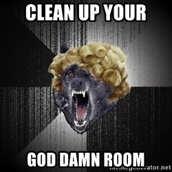 Insanity Wolf - CLEAN UP YOUR  GOD DAMN ROOM