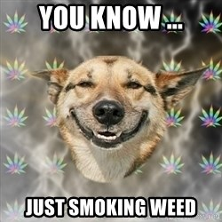 Stoner Dog - you know ... just smoking weed