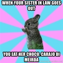 yAy FoR LifE BunNy - When your sister in law goes out You eaT her choco. Carajo di meirda
