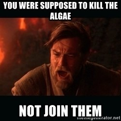 """Obi Wan Kenobi """"You were my brother!"""" - You were supposed to kill the algAe Not join them"""