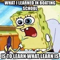 Spongebob What I Learned In Boating School Is - what i learned in boating school is to learn what learn is